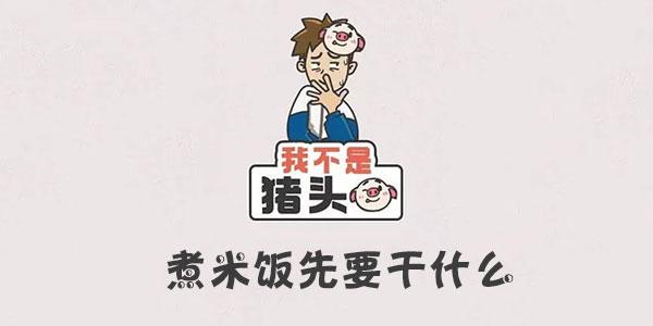 我不是猪头煮米饭先要干什么攻略